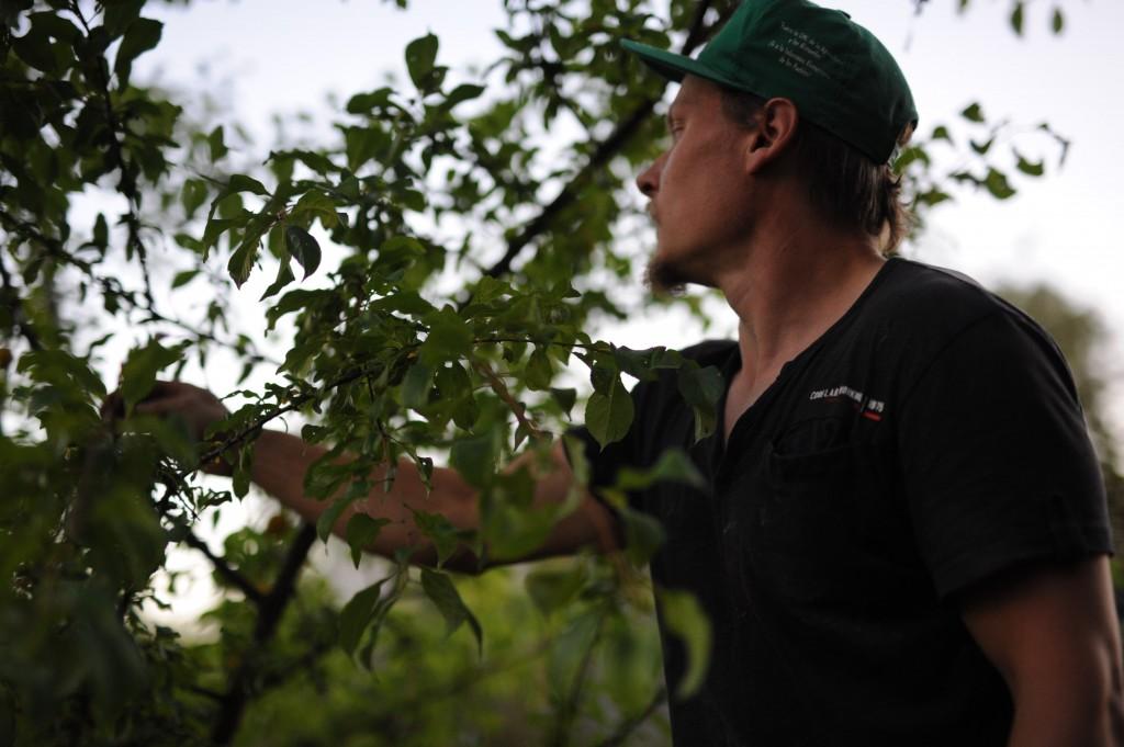 jukka puussa